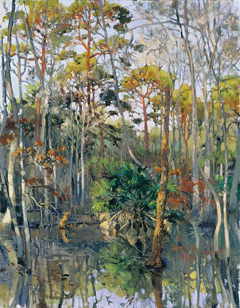 "Palmetto Bluff , Bluffton SC, Carolina Bay Latitude 32° 9'59.14""N : Longitude 80°55'21.60""W The Palmetto Bluff Collection"